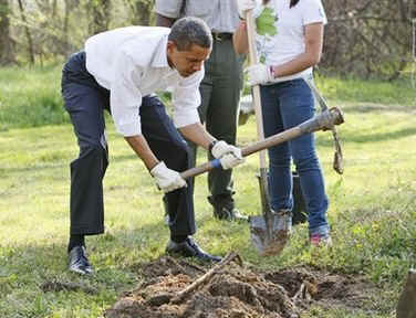 President Barack Obama plants trees with volunteers at the Kenilworth Aquatic Gardens.