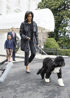 First Lady Michelle Obama leads Bo the new First Dog from the White House to the South Lawn.