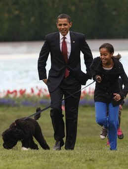 Photo: Malia Obama walks with Bo on the South Lawn of the White House on Bo's first day in his new home.on April 14, 2009.
