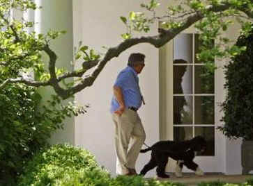 The First Dog Bo is walked along the Colonnade of the White House by White House horticulturist Dale Haney.