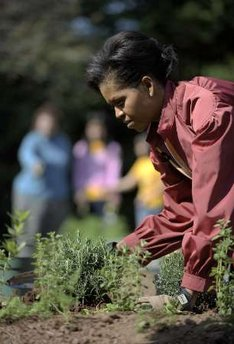 First Lady Michelle Obama Obama tends to her White House Kitchen Garden with help from students of Bancroft Elementary School.